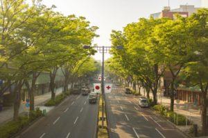 【オシャレさんだけじゃない!】表参道駅乗換えターゲットを狙う!